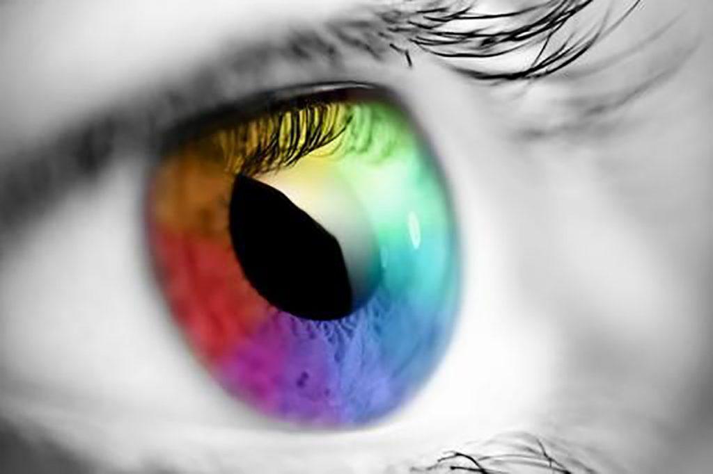 Videos sobre percepción visual para niños
