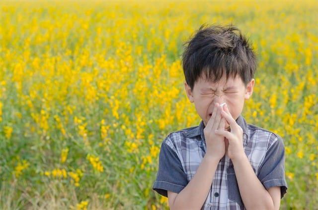 Alergias y salud visual