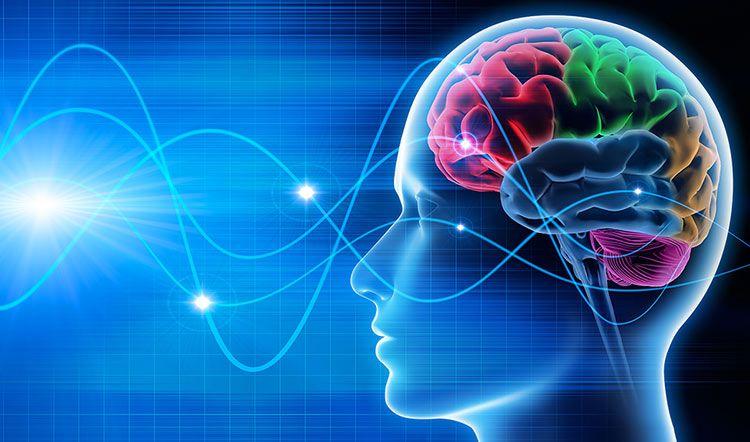 Científicos crean un sistema para hablar con ondas cerebrales